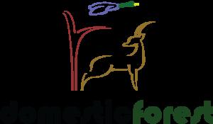 logo 2nd edition 300x175 - www.domesticforest.com